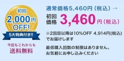 ピースナイト・定期コース.jpg